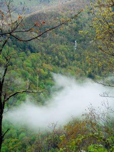 Waterfall on Chestnut Ridge