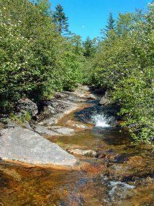 Little Sam Trail Creek Crossing