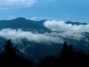 Pisgah National Forest: Black Mountains Area