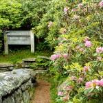 Start of Craggy Gardens Trail