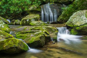 Pisgah National Forest: Catawba Falls