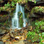 Small Cascade in Pinnacle Park