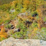 Fall Color On Pinnacle