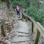 Staircase at High Shoals Falls
