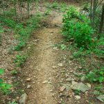 Sidehill Trail Creek Crossing
