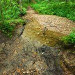 Ledford Trail Creek Crossing