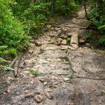 Wolf Branch Creek Crossing