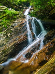 Nantahala National Forest: Southern Nantahala Wilderness