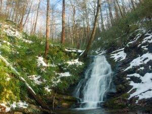 Pisgah National Forest: Curtis Creek Area