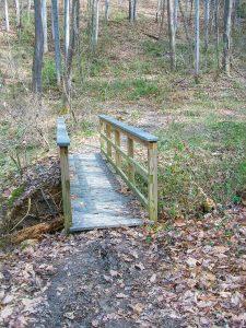Bridge in Richmond Hill Park