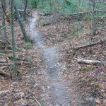 Dirt Mound on the Trail