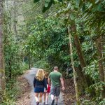 Family HIke on the Estatoe Trail