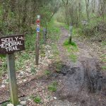 Seely Memorial and North Slope Trails