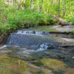 Small Cascade on Leek Creek