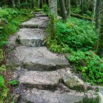 Black Mountains Crest Trail Steps