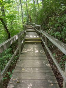 Four Seasons Trail Boardwalk