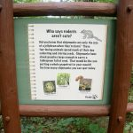 Great Woodland Adventure Trail Sign