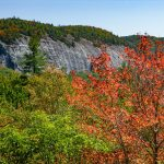 Big Green Mountain in Early Fall Color