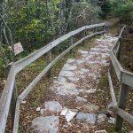 Devil's Courthouse Trail Steps