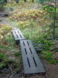 Footbridge on the Mountains to Sea Trail