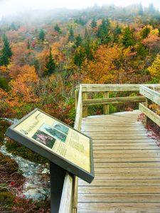 Sign on Rough Ridge
