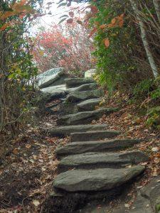 Rock Steps on Rough Ridge