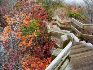 Staircase on Rough Ridge