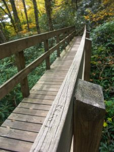 Tanawha Trail Bridge
