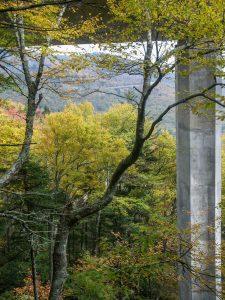 View Under the Linn Cove Viaduct