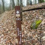 Buck Spring Trail Sign