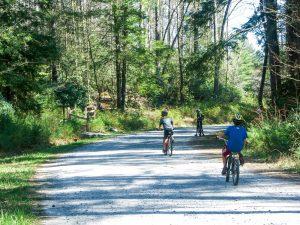 Kids Mountain Biking in DuPont
