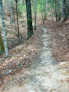 Pitch Pine Trail
