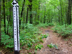 Briery Fork Trail at the new Turkey Knob Extension