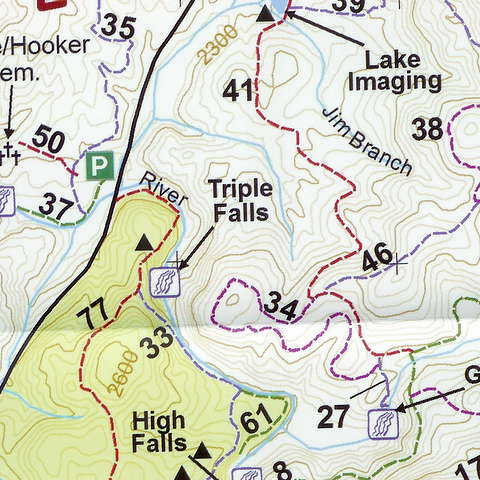 map_fodf