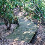Bridge on the Cherry Cove trail