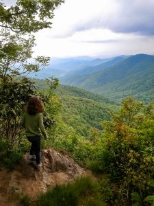 View from Start of the Shut-In Trail
