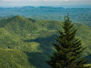 Pilot Mountain from Chestnut Bald