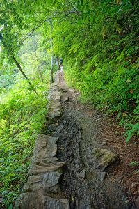 Rock Wall and Mud on the Crabtree Falls Trail