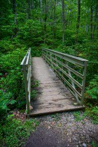 Bridge on the Crabtree Falls Trail