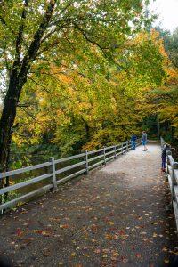 Bridge Over the Linville River