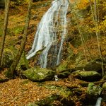 Little Lost Cove Creek Falls in Fall Color
