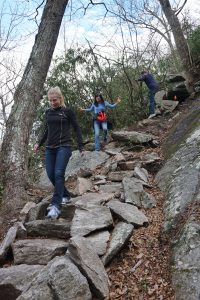 Wildcat Rock Trail