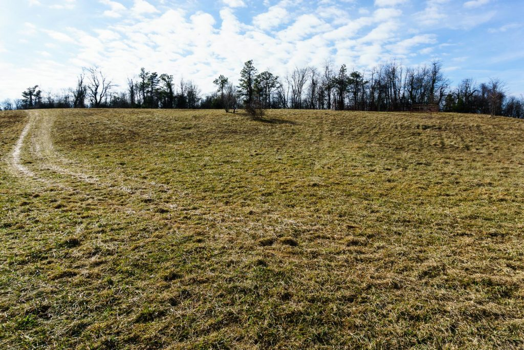 2014-12-31_upper-hickory-nut-gorge_trombatore-trail-blue-ridge-pastures