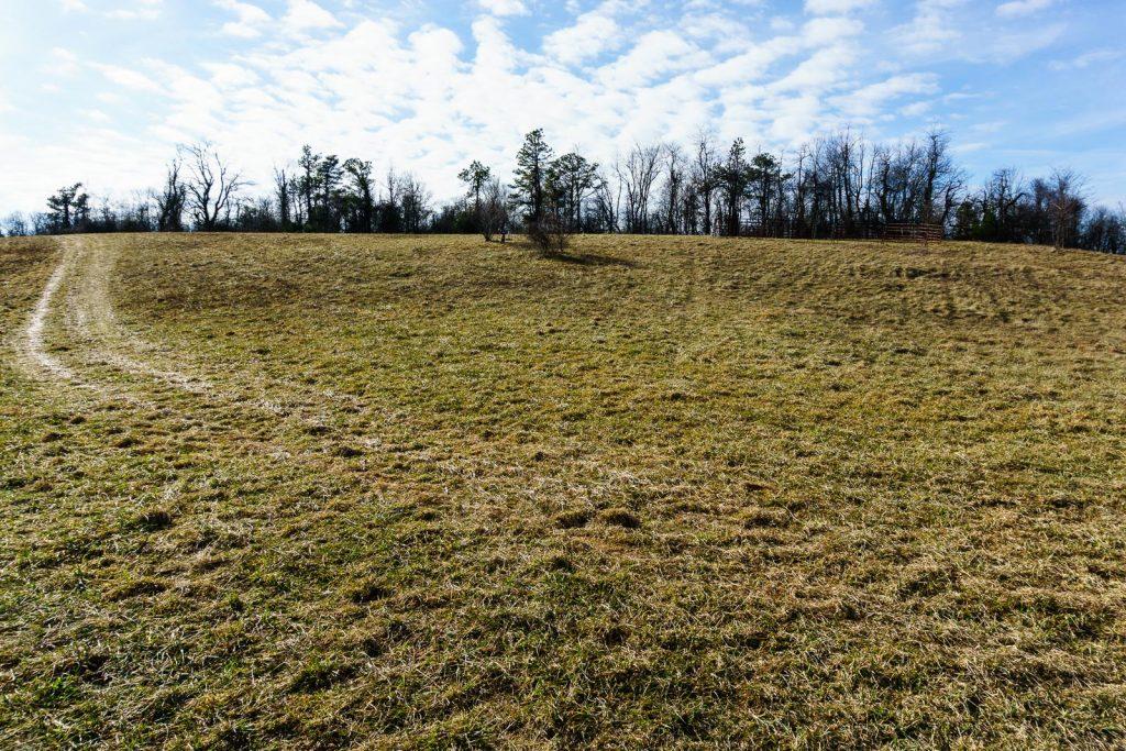 2014-12-31_upper-hickory-nut-gorge_trombatore-trail-blue-ridge-pastures
