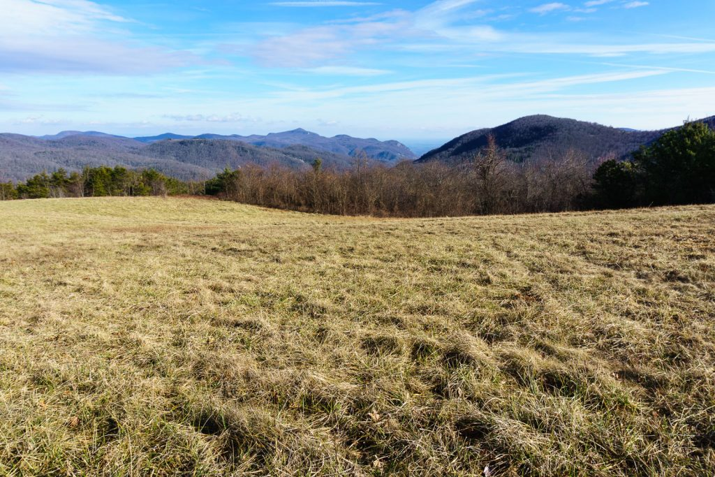 2014-12-31_upper-hickory-nut-gorge_trombatore-trail-pasture-gorge-view