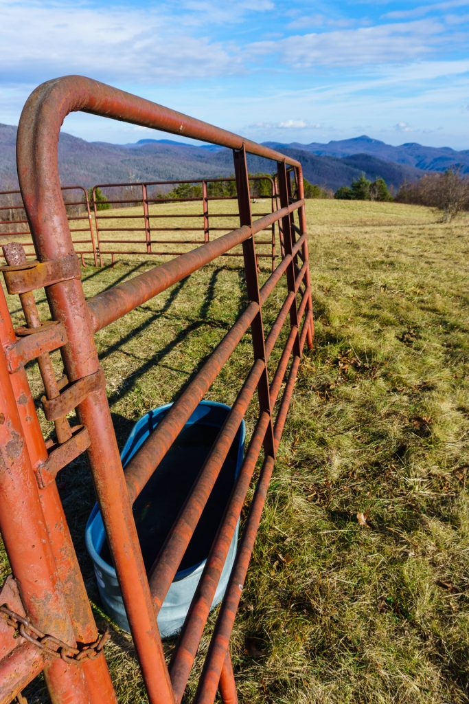 2014-12-31_upper-hickory-nut-gorge_trombatore-trail-pen-pasture-view