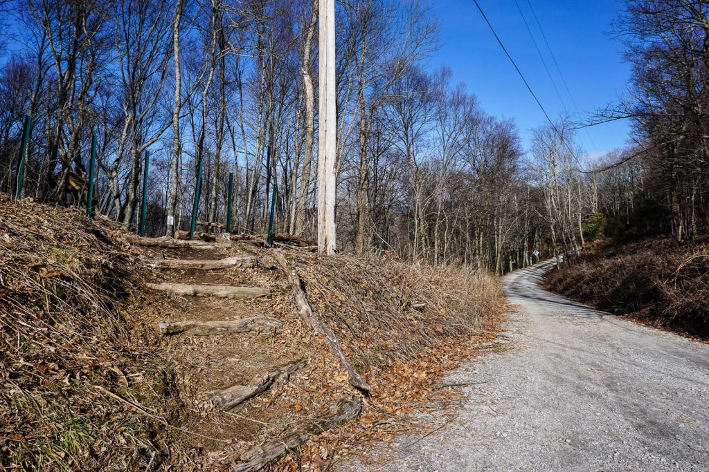 2014-12-31_upper-hickory-nut-gorge_trombatore-trail-road-steps