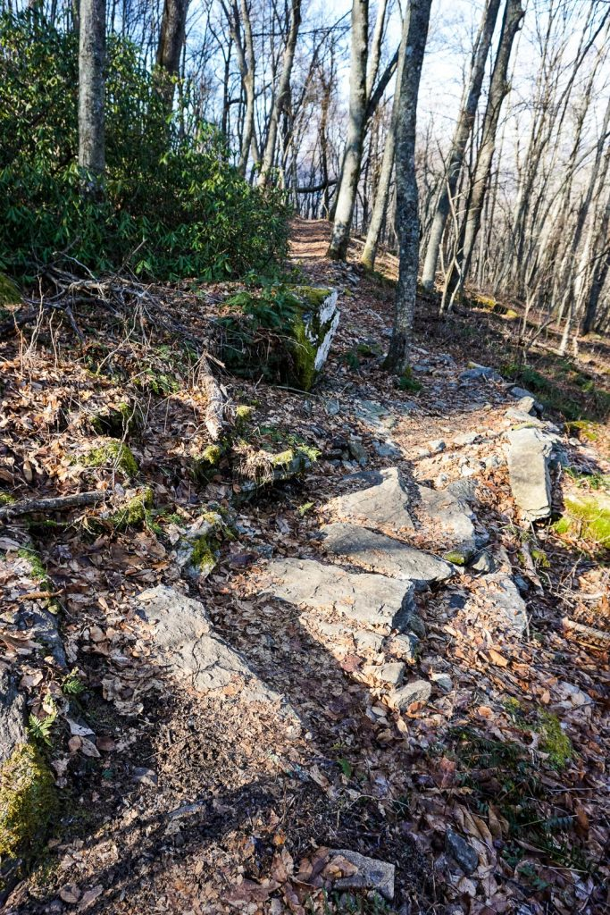 2014-12-31_upper-hickory-nut-gorge_trombatore-trail-rock-steps