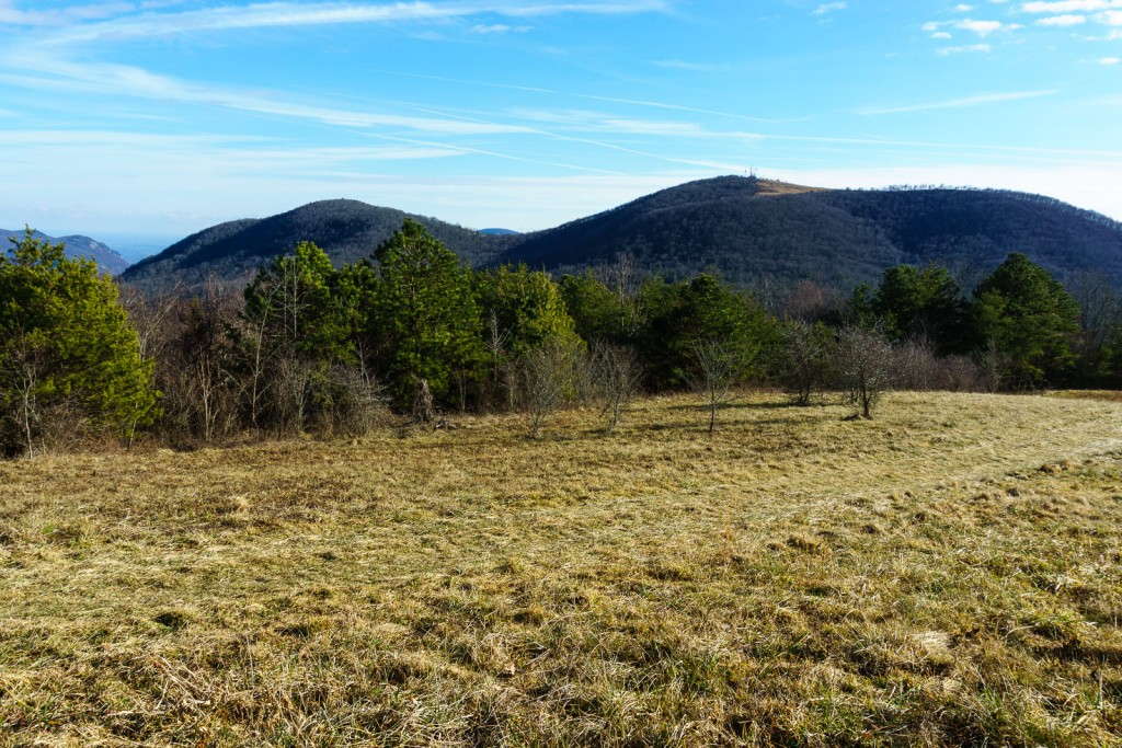 2014-12-31_upper-hickory-nut-gorge_trombatore-trail-view-bearwallow
