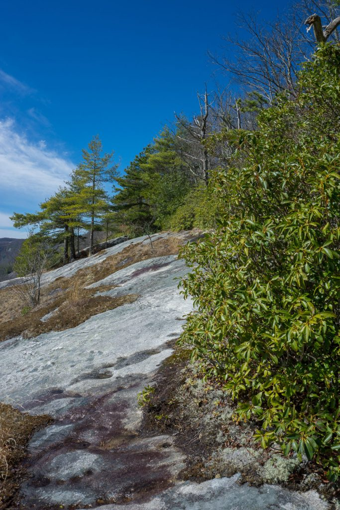 2015-03-15_panthertown-valley_blackrock-mountain-overlook-from-trail